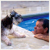 Man Playing with a Dog Poolside